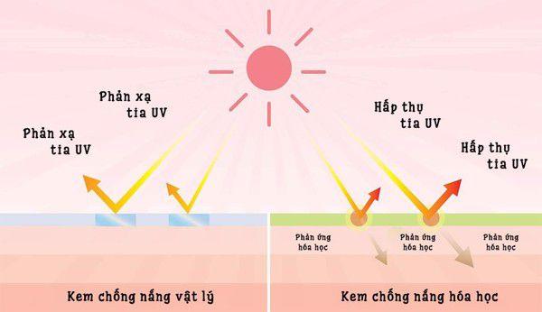 Cơ chế hoạt động kem chống nắng vật lý và hóa học