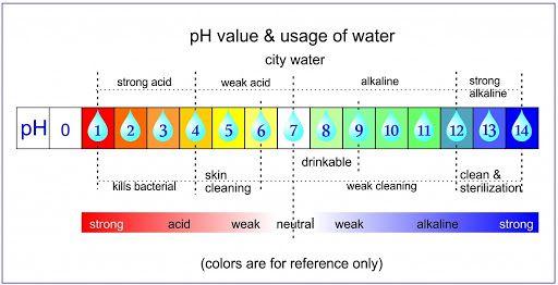 pH sua rua mat